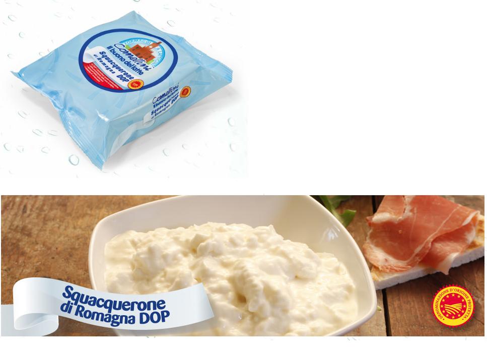 Squacquerone-comellini-ingrosso-bologna-i-freschi